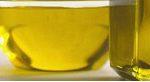 huile-dolive-algarve-portugal-olive-galega